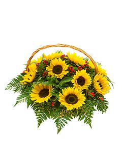 9 saulespuķes ar zaļumiem grozā