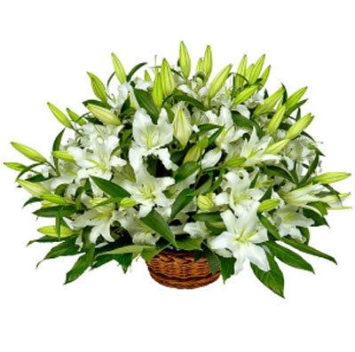 15 lilijas grozā