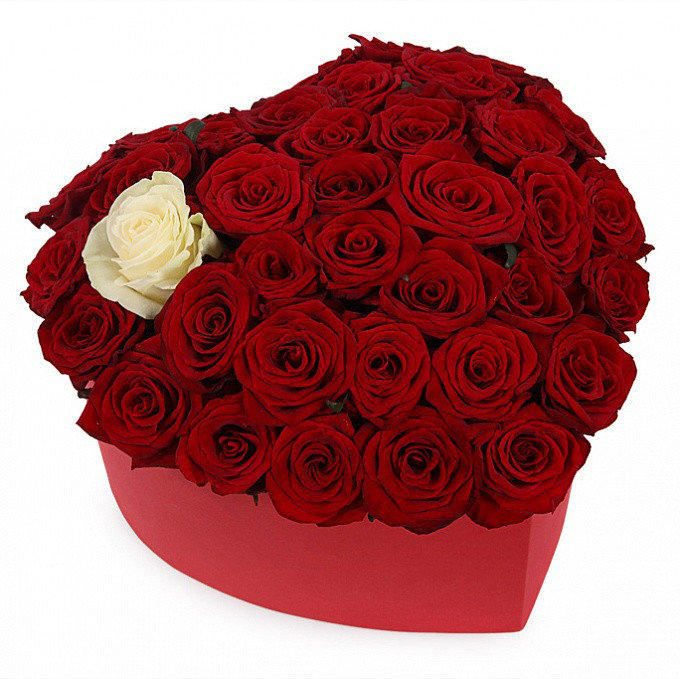24 sarkanas un 1 balta roze sirds formas dāvanu kastē
