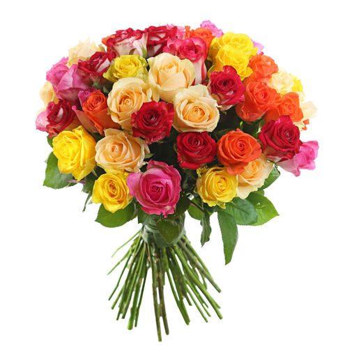 25 dažādu krāsu rozes 40 cm