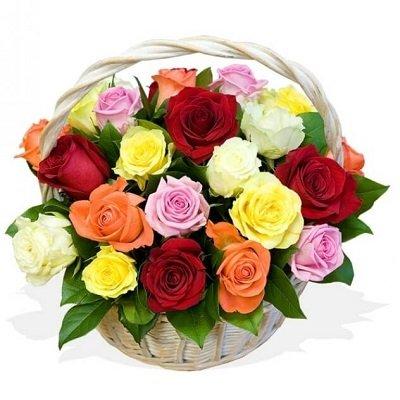 25 dažādu krāsu rožu grozs