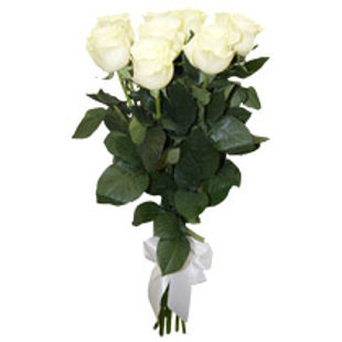 Baltas rozes 40 cm (skaits pēc izvēles)