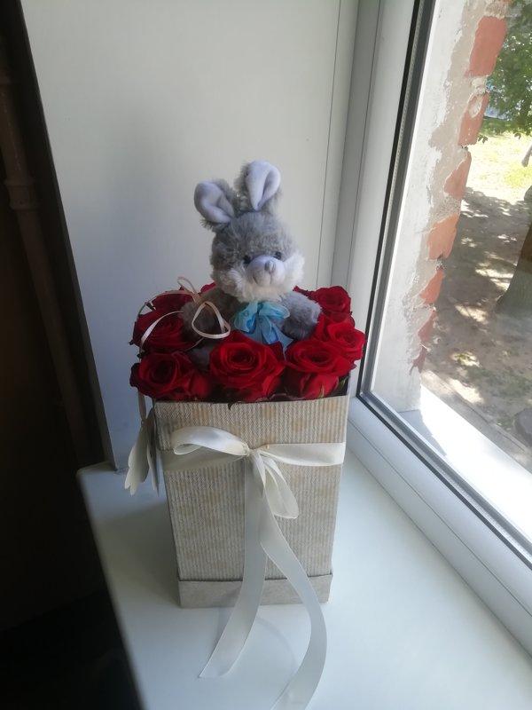 Sarkanas rozes ar mazu lācīti dāvanu kastē