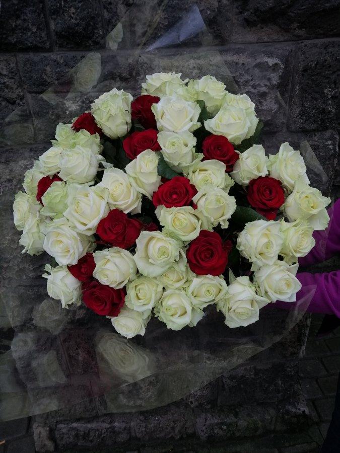 49 dažādu krāsu rozes (pēc izvēles - 3 dažādi garumi)