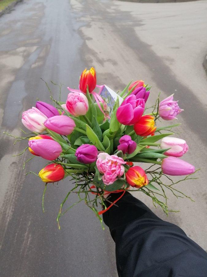 19 dažādu krāsu tulpes