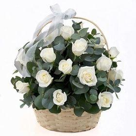 Balto rožu grozs