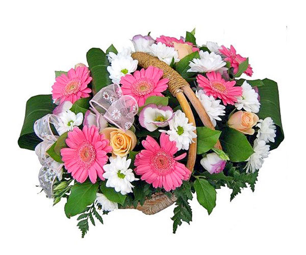 Gerberu, krizantēmu un rožu grozs