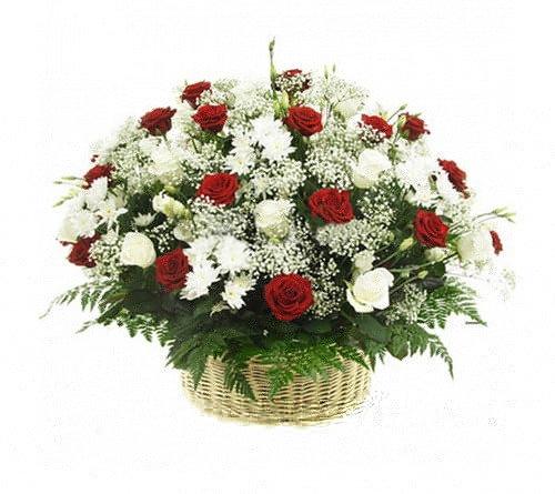 Grozs ar krizantēmām, sarkanām un baltām rozēm