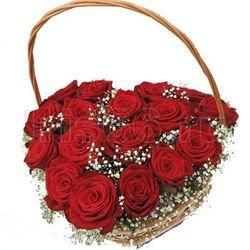 Sarkano rožu grozs - zemais