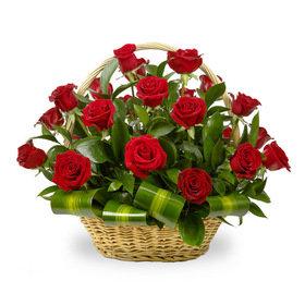 Sarkano rožu grozs - augstais
