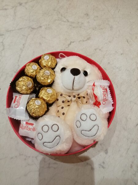 Dāvanu kaste ar mīksto rotaļlietu un saldumiem