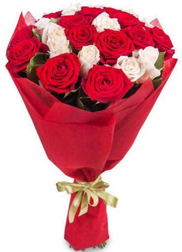 19 sarkanas un baltas rozes iepakojumā (Garums pēc izvēles)